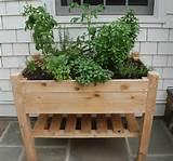 dig this an herb garden