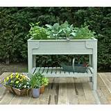 kitchen garden living larder raised planter lifestyle