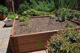 raised garden bed or box garden is perfect for tight