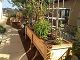 Wonderful raised herb garden design