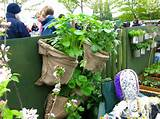 Gallery of Container Herb Garden Design