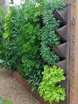Small Herb Garden Design » Wonderful Small Herb Garden Design ...