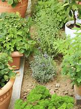 beautiful herb garden design ideas 09 jpg