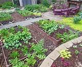 back veggie garden planting1 jpg