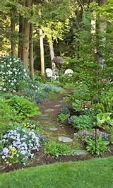 cozy shade garden