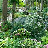 Posted by Admin at 9:43 PM Labels: Shade Garden Design Ideas Pictures