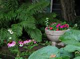 Best Shade Garden Design Ideas | Simple & Frugal