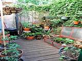 ... gardening ideas and watch your modest space garden spring up with your