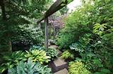 tranquil shade garden in toronto