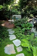 shade garden spot
