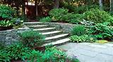 design garden ideas for dry shade garden ideas for dry shade