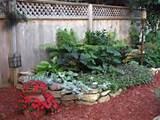building a shaded garden