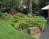 19 383 part shade garden home design photos