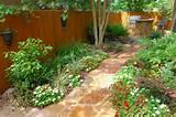 shade_garden3