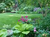 ... to Think About Perennial Shade Garden Design : Shade Garden Plans