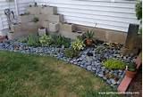 my succulent zen garden