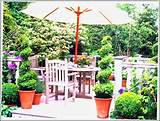patio garden ideas photos