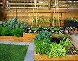 small vegetables garden patio ideas
