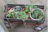 radio flyer herb garden for the patio