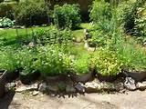 Nova Scotia Preppers has a nice herb garden made of tires!