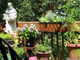 ... Container Gardening Method in Your Garden: Container Gardening Ideas