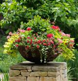 Thrill, Fill, and Spill: Three Easy Steps to Container Gardening