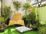 Complete Garden in Containers for your Apartment Balcony