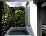 wall garden ideas for small apartment house