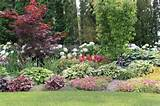 patio decorative garden patio plants and flower landscape ideas image