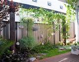 Vertical Hanging Garden Beautiful Pergola Patio Plants Design Clean ...