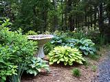 garden ideas cheap backyard landscaping inexpensive landscaping ideas ...