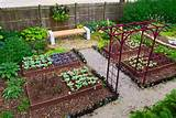 backyard vegetable garden decoration ideas do vegetable gardening why