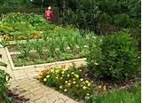check out other gallery of vegetable garden design ideas backyard