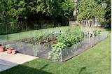 check out other gallery of vegetable garden design ideas backyard