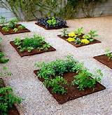 backyard vegetable garden ideas - vegetable garden design [485x500 ...