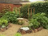 ... Backyard Vegetable Garden 7 Scenic Cool Backyard Ideas Scenic Backyard