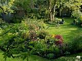 Natural Backyard Landscaping Ideas, Save Money Creating Wildlife ...