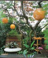 Cool Small Garden Ideas And Designs Backyard Deck Big Tree Lampions