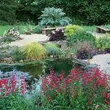 Beautiful garden design and backyard landscaping ideas in natural and ...