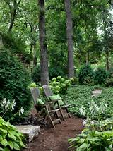 areas traditional landscape plant ideas shady backyard seating area