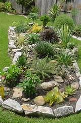 three-tier cacti and succulent display garden - stacked limestone rock ...