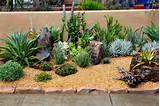 ... Succulents Garden Patio Decor Ideas in the Succulents Garden Patio
