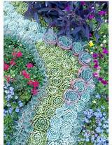 Gorgeous succulent design