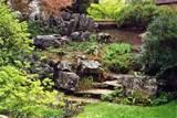 Rock Garden for Beauty