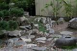 ... Rock Garden Design Small Japanese Rock Garden Home Designs Ideas