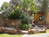 Cultivating Rock Garden Ideas