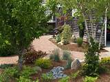 Amazing Japanese Rock Garden