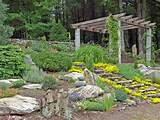 Japanese Rock Garden Tropical Backyard Garden : Flower Garden Ideas ...