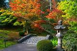 pebble garden ideas stone japanese garden bridge ideas 550x365