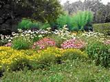 garden cottage 01